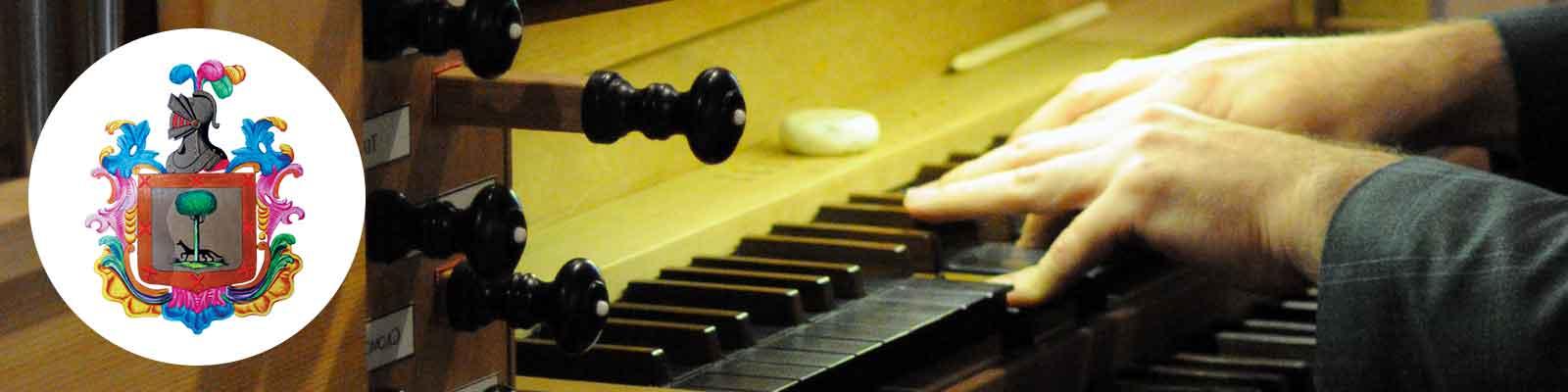 Organo corso